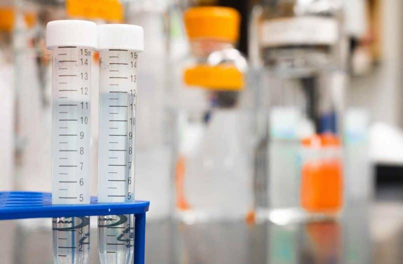 Dwie próbki laboratoryjne