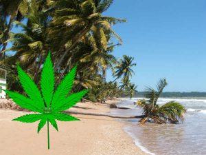 Trynidad i Tobago dekryminalizuje marihuanę