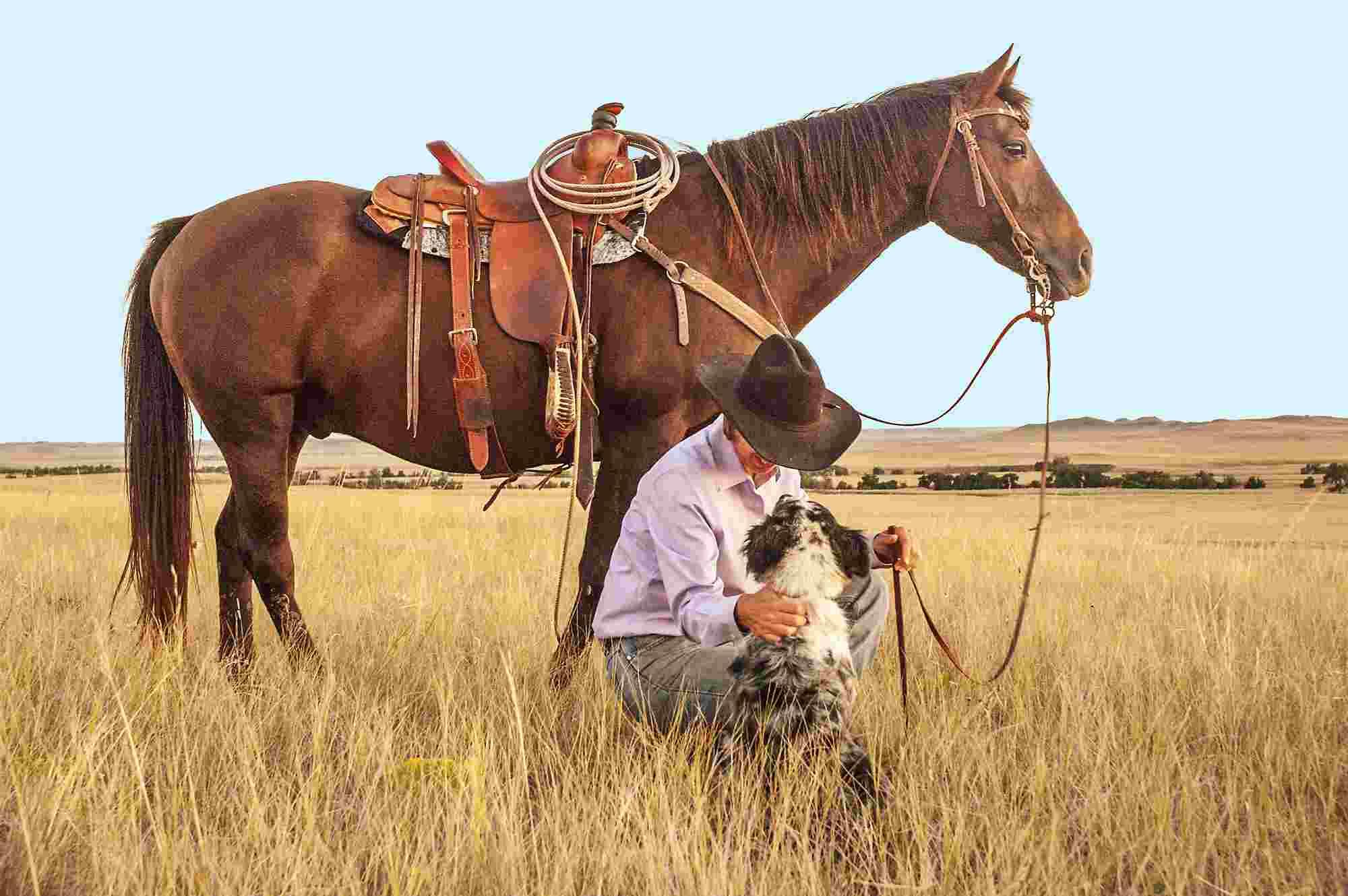 Kowboj z psem i koniem