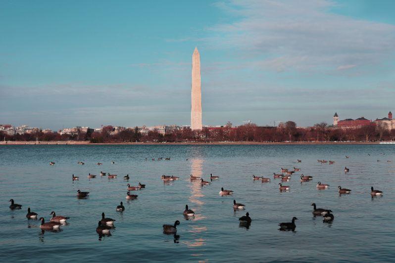 Widok na pomnik w Waszyngtonie