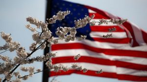 Legalizacja marihuany w całym USA! Komitet Federalny zatwierdza projekt.