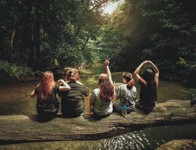 Pięć dziewczyn siedzących na konarze drzewa