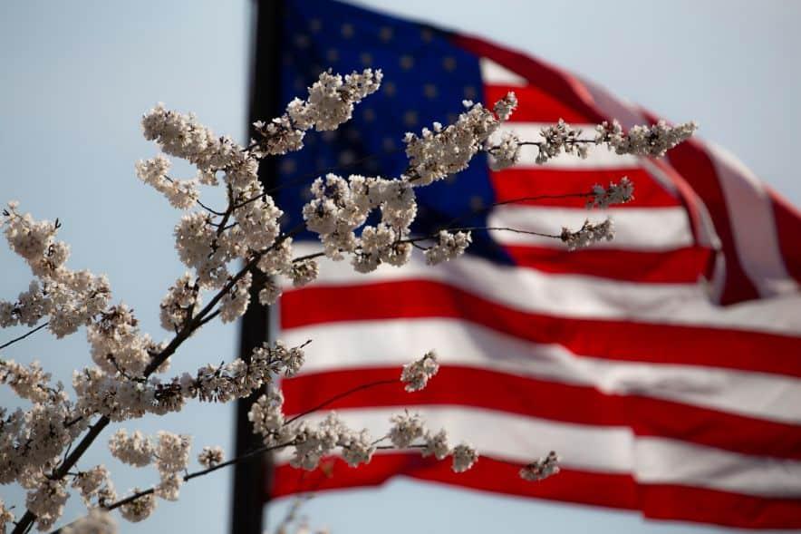 Amerykańska flaga w tle kwiaty