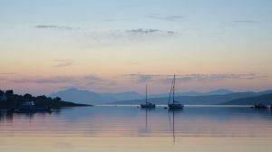 Szkocja: pierwsza legalna uprawa konopi indyjskich