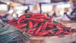 Papryka chili i marihuana a zaburzenia jelitowe. Najnowsze badania