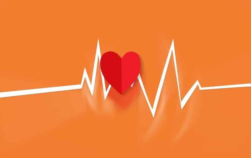 Rysunek serca i tętna