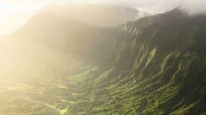 Hawaje: ochrona prawna dla pracowników używających konopi indyjskich?