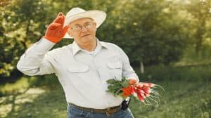 Jak CBD może pomóc seniorom?