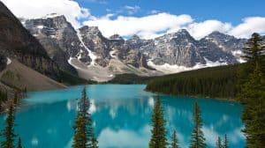 Kanada: Legalizacja marihuany nie wyeliminowała czarnego rynku