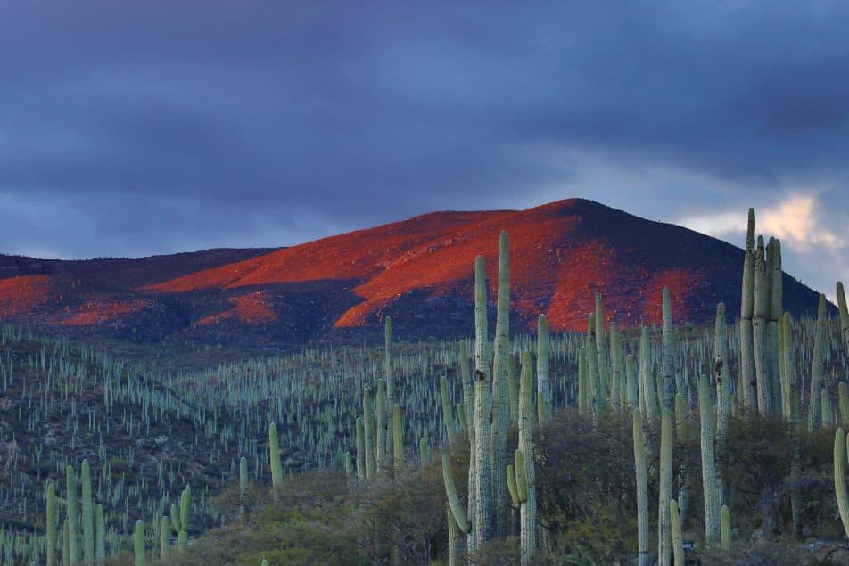 Krajobrazy Arizony