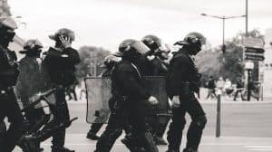 Policjanci także hodują marihuanę!