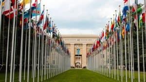 ONZ zmienia klasyfikację marihuany medycznej