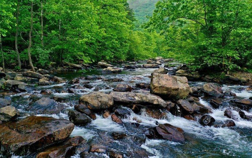 Rzeka w Wirginii