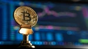 Nielegalna kopalnia Bitcoina zamiast plantacji marihuany