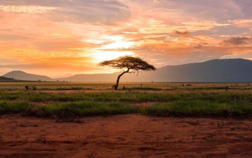 Pejzaż południowej Afryki