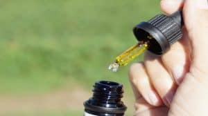 Jak dostać pozwolenie na produkcję olejków CBD w Polsce?